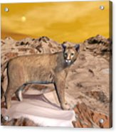 Cougar In The Mountain - 3d Render Acrylic Print