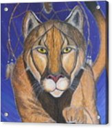Cougar Medicine With Cobalt Blue Background Acrylic Print