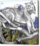 Cougar Mountain Acrylic Print by Russ  Smith