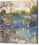 Cougar N Horses Acrylic Print