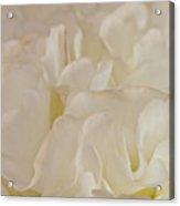 Could It Be Lemon Meringue Acrylic Print