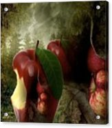 Country Apple 2 Acrylic Print