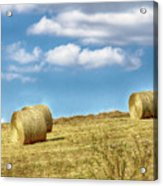 Country Bales Acrylic Print