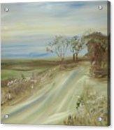 Country Coastal Road Acrylic Print