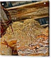 Country Duplex Acrylic Print
