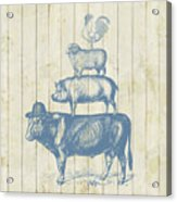 Country Farm Friends Acrylic Print