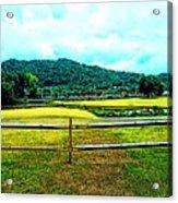 Country Field Acrylic Print
