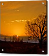 Country Golden Sunrise Acrylic Print