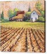Country Harvest Acrylic Print