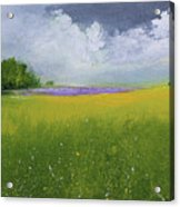 Country Landscape Acrylic Print