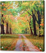 Country Lane - A Walk In Autumn Acrylic Print