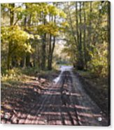Country Lane In Autumn 2 Acrylic Print
