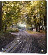 Country Lane In Autumn 4 Acrylic Print
