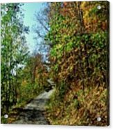 Country Path Acrylic Print
