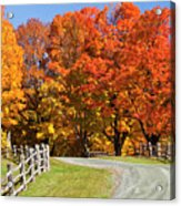 Country Road Autumn Acrylic Print
