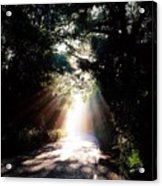 Country Road, Kenmare, Co Kerry, Ireland Acrylic Print by The Irish Image Collection