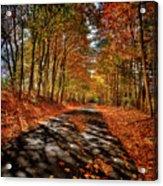 Country Road Acrylic Print