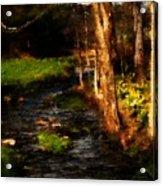 Country Stream Acrylic Print