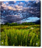 Country Strolling Acrylic Print