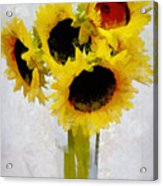 Country Sun I Acrylic Print