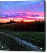 Country Sunrise Acrylic Print