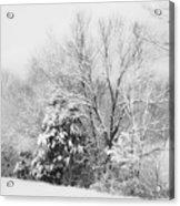 Country Winter Acrylic Print
