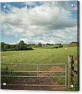 Countryside In Wales Acrylic Print