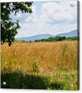 Countryside Of Italy 2 Acrylic Print