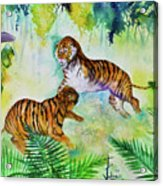 Courting Tigers. Acrylic Print by Larry  Johnson