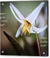 Cover Your Mouth Get Well Card Acrylic Print