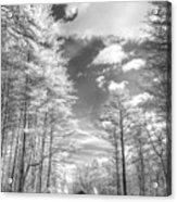 Covered Bridge Dupont North Carolina Acrylic Print