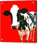 Cow In Red World Acrylic Print