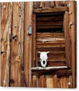 Cow Skull In Wooden Window Acrylic Print by Garry Gay