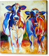 Cow Therapy Makes You Smile Acrylic Print