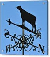 Cow Weathervane. Acrylic Print