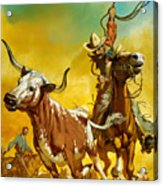 Cowboy Lassoing Cattle  Acrylic Print