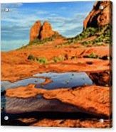 Cowpie 07-103 Acrylic Print