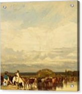 Cows Crossing A Ford 1836 Acrylic Print