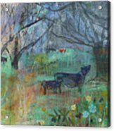 Cows In The Olive Grove Acrylic Print