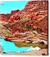 Coyote Butte Acrylic Print