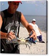 Crabbin For Blues Acrylic Print