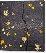 Crack 2 Acrylic Print