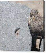Crack Below Acrylic Print