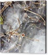Crackling Ice I Acrylic Print
