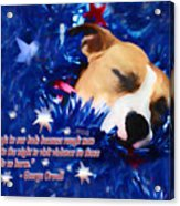 Cradled By A Blanket Of Stars And Stripes - Quote Acrylic Print