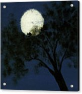Cradling The Moon Acrylic Print