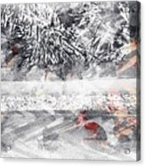 Cranberries In Winter Acrylic Print