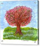 Cranberry Melody Acrylic Print