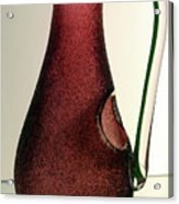 Cranberry Pitcher Acrylic Print