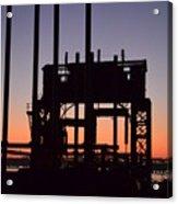 Crane At Sunset Acrylic Print